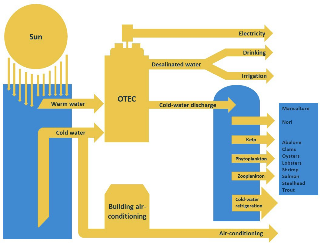OTEC diagram 3.jpg